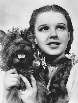 270px-The_Wizard_of_Oz_Judy_Garland_Terry_1939